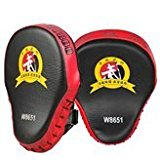 Flexzion Boxing Focus Mitt - Punching Mitts Pad Target Training Glove for Martial Arts Taekwondo Karate Muay Thai UFC MMA Sanda Drill PU Leather (Red (1 Pair - 2 Mitts))