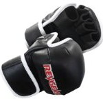 Revgear Kids Deluxe MMA Glove (Medium)
